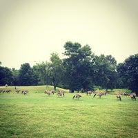 Photo taken at Birkdale Golf Club by Akihiko S. on 6/28/2014