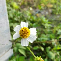 Photo taken at Kulhudhuffushi by Saly on 10/28/2015