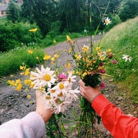 Photo taken at Карпати / Karpaty by Julia V. on 6/26/2015