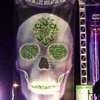 Photo taken at Dia De Los Muertos USA by Yana A. on 11/3/2014