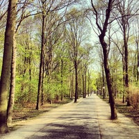 Photo taken at Tiergarten by Matas on 4/26/2013