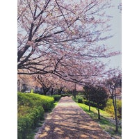 Photo taken at ふるさと尾根道緑道 by mami f. on 4/8/2014