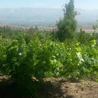 Photo taken at Şehiryolu Bağları by Celal N. on 6/21/2014
