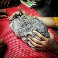 Photo taken at Premier Pet Hospital by Prin C. on 9/6/2014