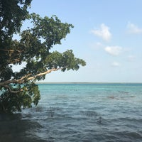 Photo taken at Bacalar by Christian Z. on 4/29/2017