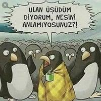 Das Foto wurde bei Kilyos Sahili von MUSTAFA SELİM C. am 3/3/2018 aufgenommen