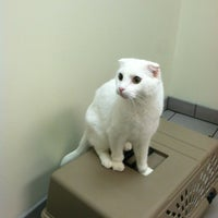 Photo taken at Mayfair Animal Clinic by John L. on 9/15/2012