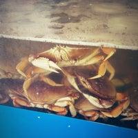 11/22/2012にDeniz Eda G.がSun Fat Seafood Companyで撮った写真