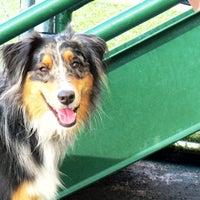Photo taken at Savy Paws Pet Resort by Savy Paws Pet Resort on 4/3/2017