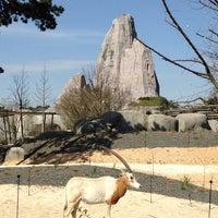 Foto tirada no(a) Parc zoologique de Paris por Nicolas G. em 3/29/2014