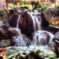 Photo taken at Disney's Polynesian Village Resort by Patrick on 5/7/2013