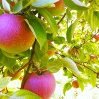 Photo taken at Applecrest Farm Orchards by Adam C. on 9/16/2012
