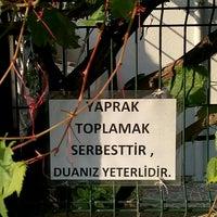 Photo taken at Beylerbeyi Profiterol by Süleyman Ç. on 9/21/2015