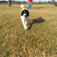 Photo taken at Camp Barkeley Dog Park by DANDREA C. on 11/8/2012