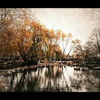 4/7/2013 tarihinde Ahmet D.ziyaretçi tarafından Soğanlı Botanik Parkı'de çekilen fotoğraf