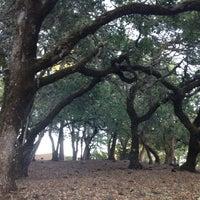 Photo taken at Kenwood Vista Estates Crossroads by Anea K. on 6/14/2014