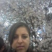 Photo taken at ilyas köyü by Havva A. on 3/15/2015