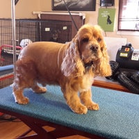 Photo taken at Native Canine LLC by Native Canine LLC on 5/14/2015