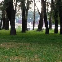 Photo taken at Памятник Лебедь 290 лет Колпино by Elisabeth G. on 7/29/2014
