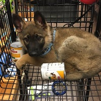 Photo taken at Pet Supplies Plus by Christian S. on 1/14/2018