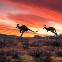 Photo taken at Gum Paddock Country Cottage - Pet Friendly Accommodation by Gail C. on 7/1/2014