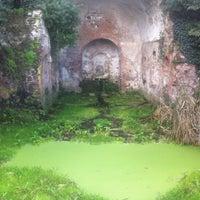 11/1/2012にEmiliano G.がParco Regionale dell'Appia Anticaで撮った写真