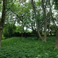 รูปภาพถ่ายที่ Mākslinieku dārzs โดย Aiga V. เมื่อ 6/15/2013
