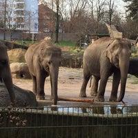 Das Foto wurde bei Kölner Zoo von Emin Ö. am 12/17/2015 aufgenommen