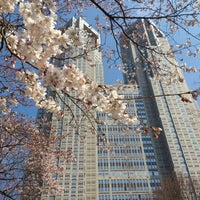 Photo taken at Shinjuku Chuo Park by marlo on 3/15/2013