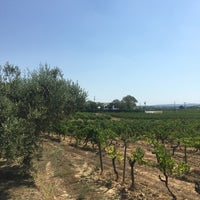 Foto tomada en Parés Baltà Wines & Cava por Luk As F. el 7/30/2017