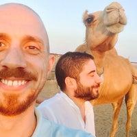 """Photo taken at ADNOC """"Al Dhiyafa"""" Ajman by Emre B. on 12/20/2014"""