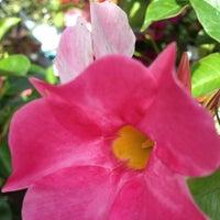 Photo taken at Starkie Brothers Garden Center by Barbara L. on 7/7/2013