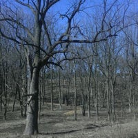 Photo taken at Oakwood Hills Community Park by Eric P. on 3/10/2012