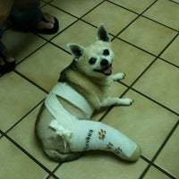Photo taken at Arizona Avenue Animal Clinic by Billy H. on 2/22/2012