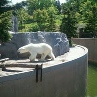 Photo taken at Polar Bear Museum by Cohei K. on 6/3/2012