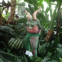 Photo taken at Volunteer Park Conservatory by Scott C. on 6/9/2012