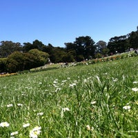 Photo taken at Hippie Hill by Crystal E. on 6/9/2012