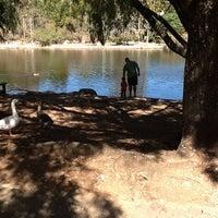 Снимок сделан в Zoo Lake пользователем Wendy A. 4/7/2012