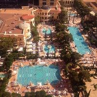 Bellagio Pool The Strip 36 Tips