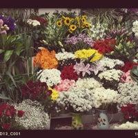 Photo taken at Sevda Flowers by Sevda Flowers on 10/13/2014
