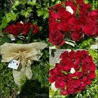 Photo taken at Sevda Flowers by Sevda Flowers on 6/26/2015