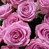 Photo taken at Sevda Flowers by Sevda Flowers on 9/28/2014