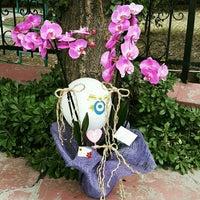 Photo taken at Sevda Flowers by Sevda Flowers on 8/3/2015