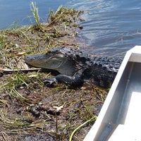 Photo taken at Everglades Nature Tours by Nele S. on 8/26/2016