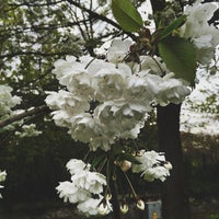 Photo taken at Tolka Vally Park by Olga C. on 5/6/2016