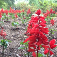 Foto diambil di Sherwood Gardens oleh Elliott P. pada 6/29/2013