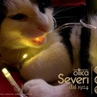 Foto scattata a Ottica Severi dal 1924 da Ottica Severi dal 1924 il 12/26/2016