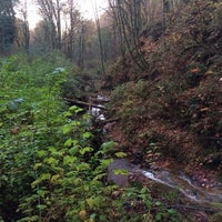 Photo taken at Coal Creek Trail by S S. on 10/24/2013