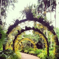 Photo taken at Singapore Botanic Gardens by Michelle L. on 2/25/2013