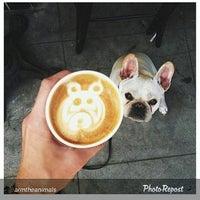 Photo prise au Muddy Paw Coffee Company par Darren L. le10/9/2015